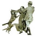 Perro policia atacando