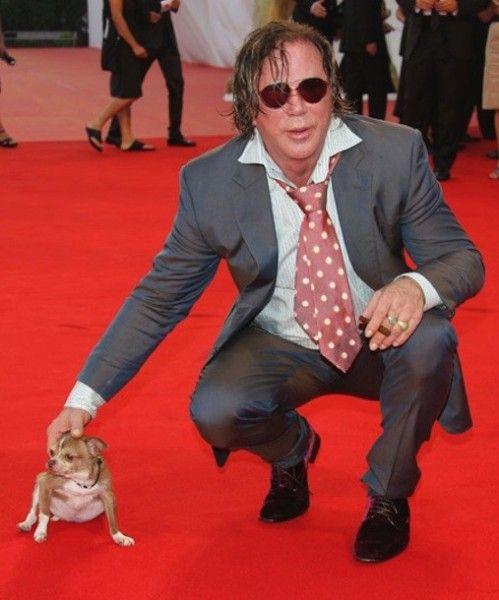 mickey rourke con un chihuahua en la alfombra roja