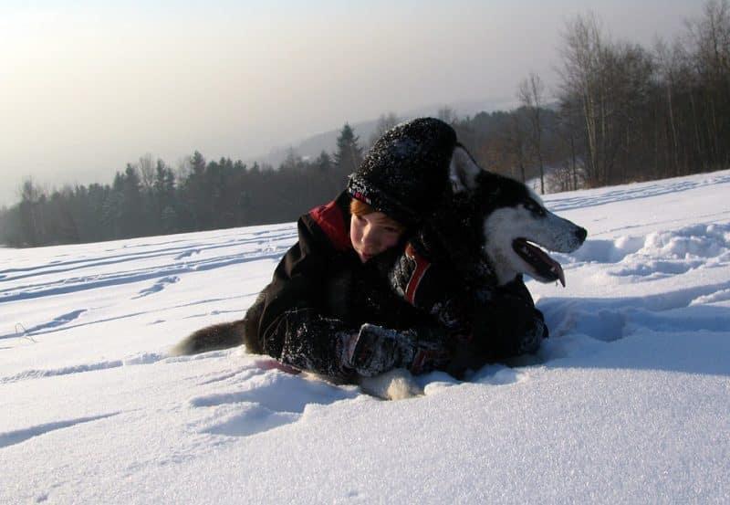 niño jugando con un Husky siberiano