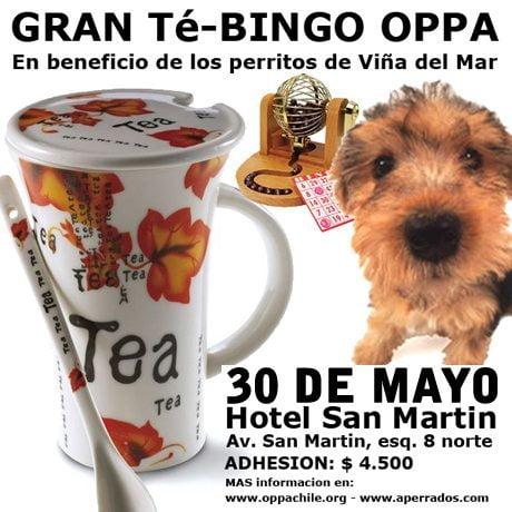 Gran Te Bingo OPPA para Ayudar a los Perritos Abandonados