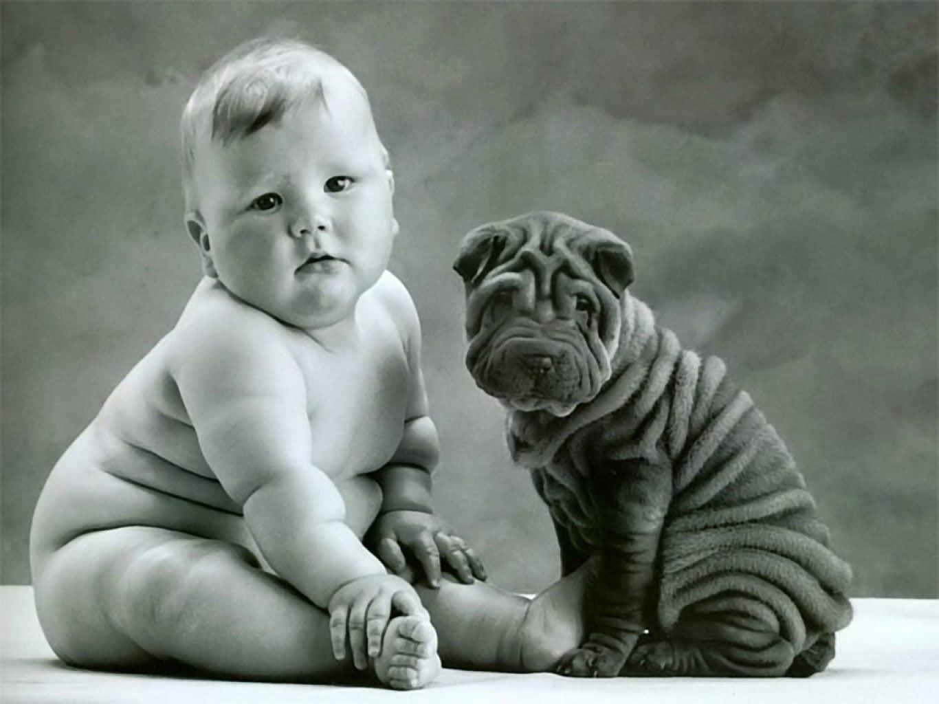 Cachorro con bebe