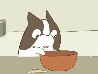 Omelette, cortometraje animado que demuestra lo mucho que te ama tu perro.