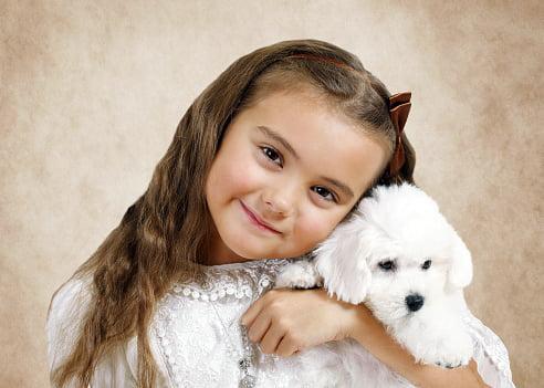 bichon frise razas de perros pequeños para niños