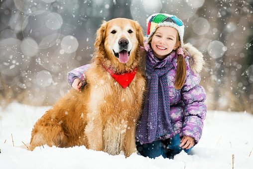 golden retriever con niña