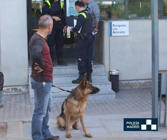 pastor alemán dado en adopción en la policía municipal de madrid
