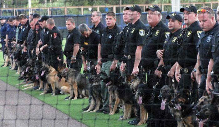 presentación de un grupo de perros policía