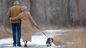 razas de perros pequeños para personas mayores