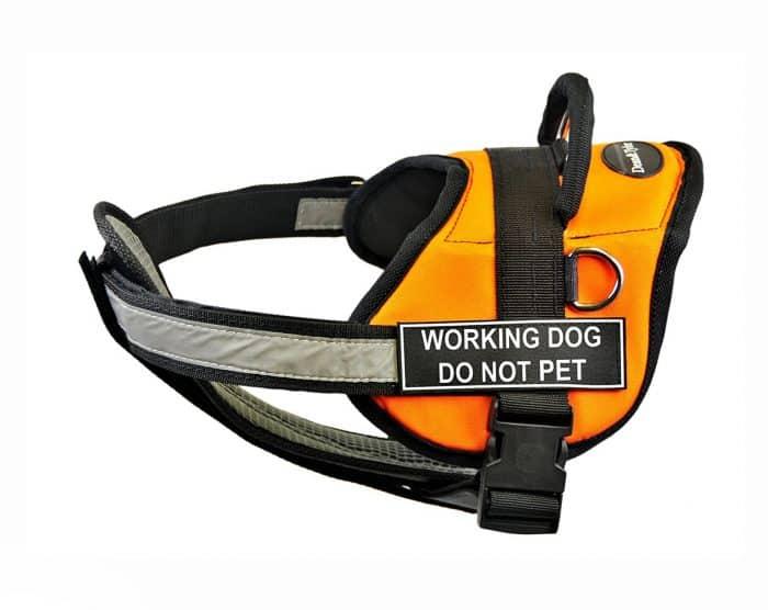 arnes de trabajo para perros
