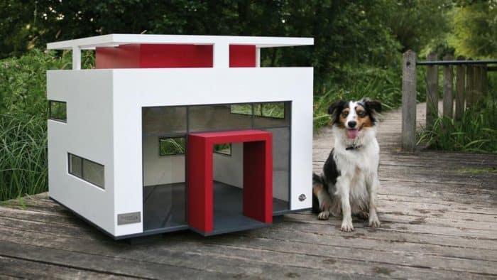 caseta para perros de exterior de lujo
