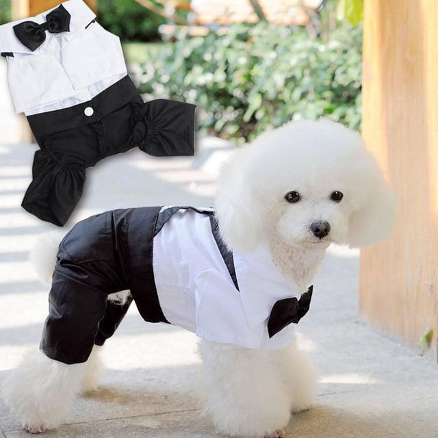 camisetas ejecutivas para perros