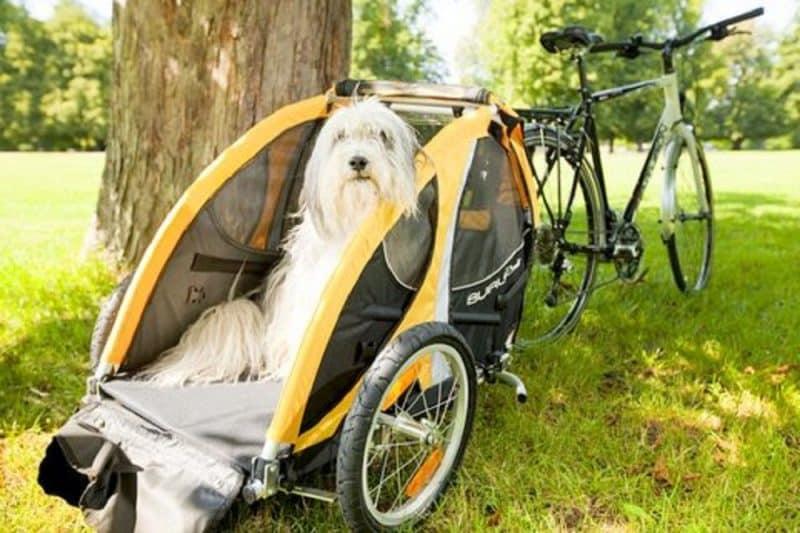 escoger un remolque para perros de bicicleta adecuado a su tamaño