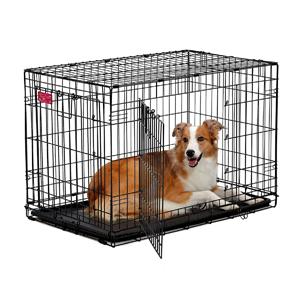 Mejores jaulas para perros que puedes comprar online