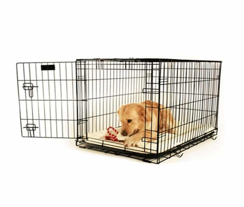 recompensar a un perro cuando ocupe su jaula
