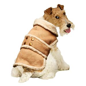 Abrigos para perros