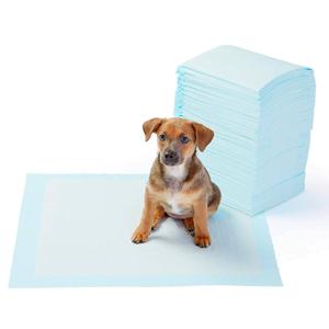 Mejores empapadores para perros que puedes comprar online