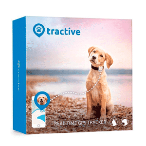 Mejores GPS para perros que puedes comprar online